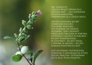 str_14-15